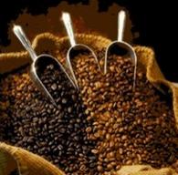 Coffee Moisture
