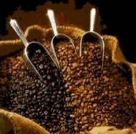 Coffee Bean Moisture 1