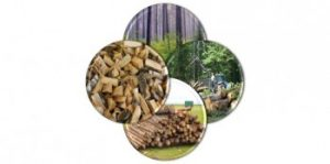 Wood & Biomass Moisture: 4 Ways to Increase Plant Efficiency