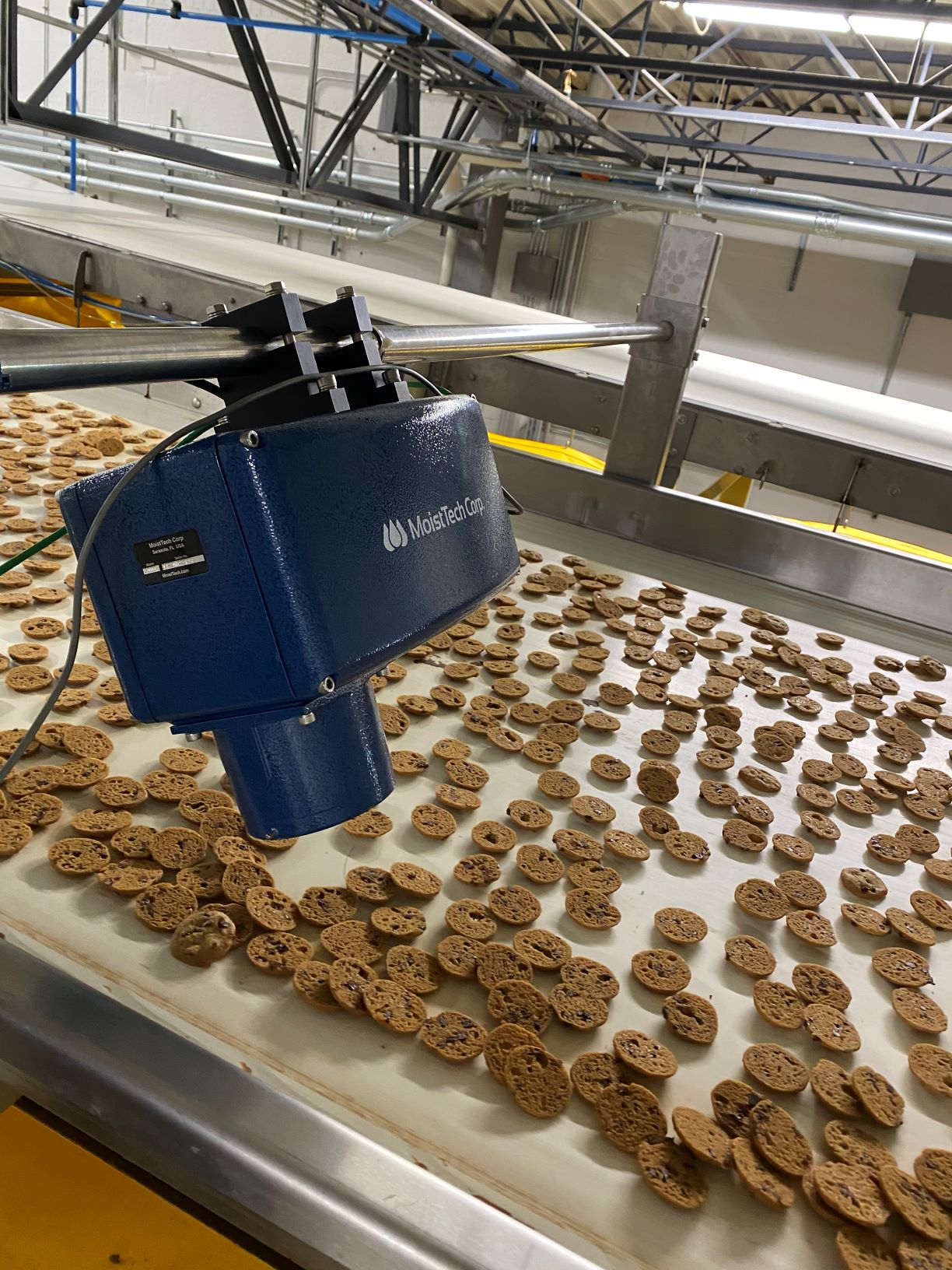 cookie moisture